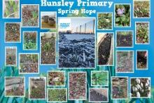 Hunsley-Primary-Spring-Hope-2